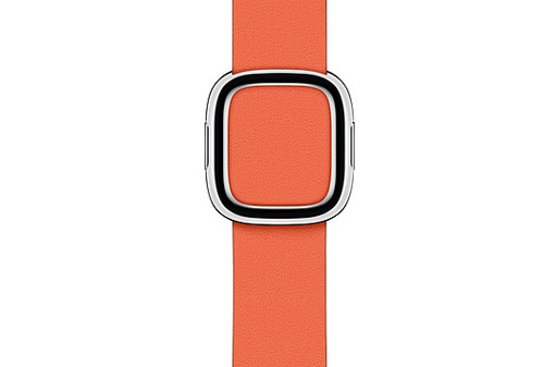 Apple-Watch-40mm-Sunset-Modern-Buckle---Large.jpg