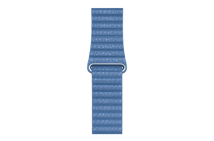 watchband-korenbloemblauw-44mm.png