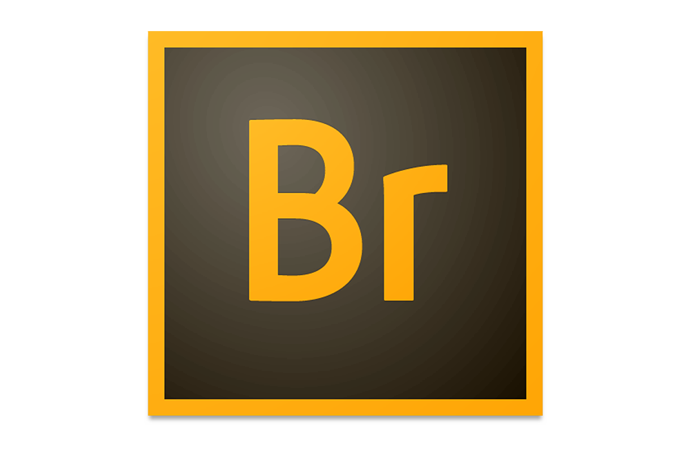 https://dpyxfisjd0mft.cloudfront.net/lab9-2/B2B/Producten%20-%20Grafics/Adobe/Bridge.png?1455020862&w=1000&h=660