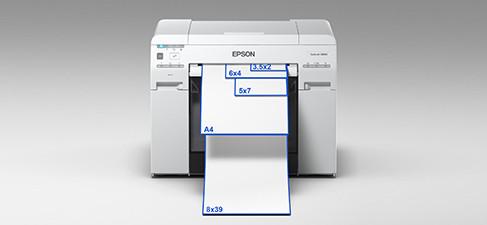 Headerimage-EpsonD800-2.jpg