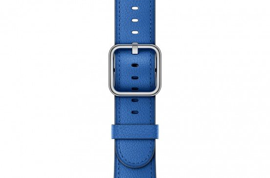 38mm-Electric-Blue-Classic-Buckle.jpg