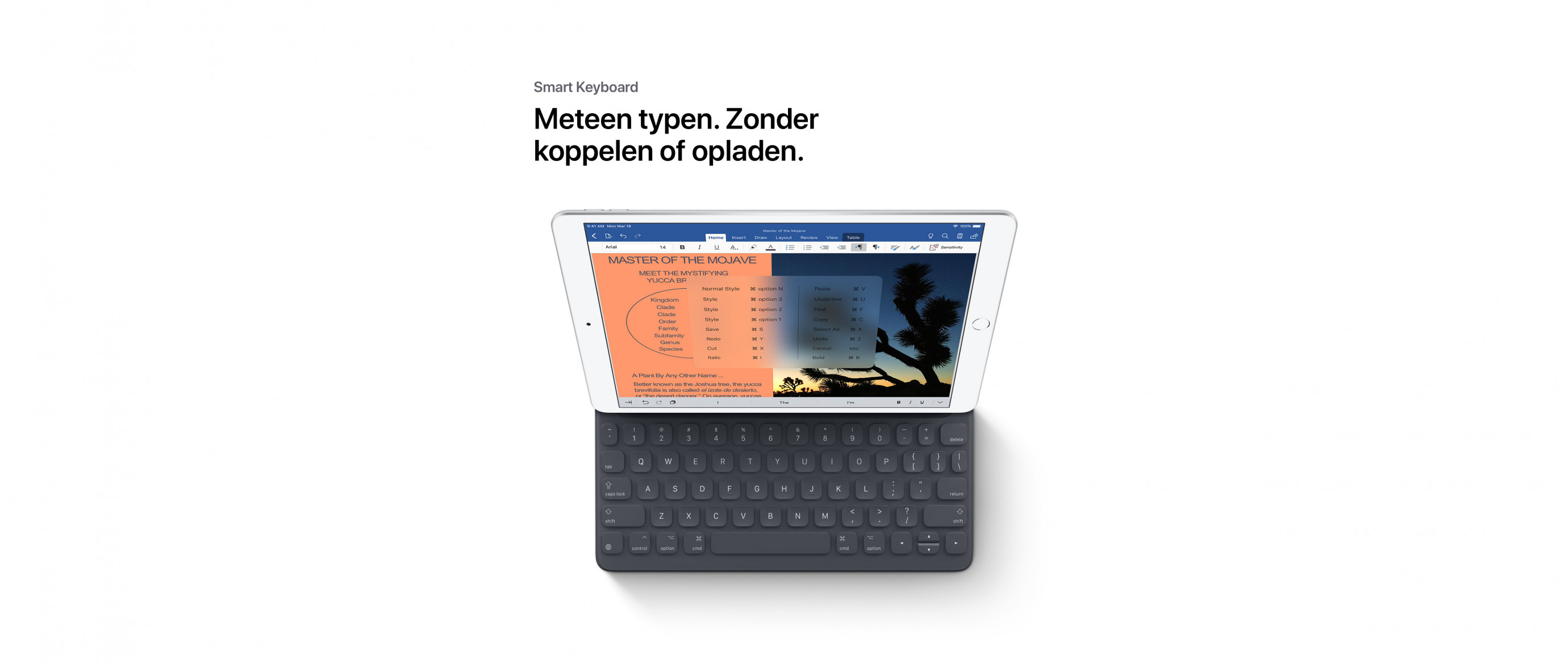 Productpage---iPad-Air-2019-nl_11.jpg