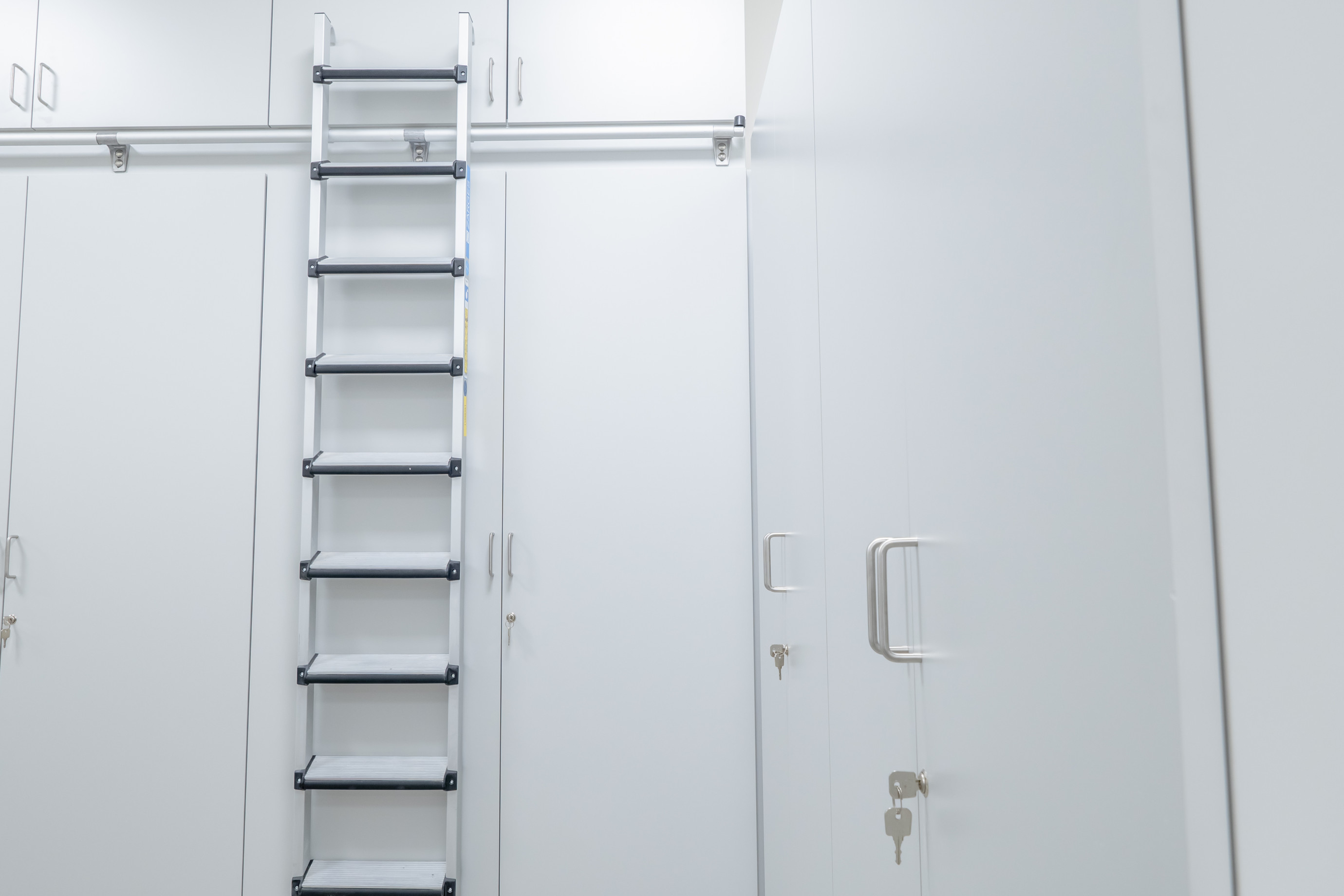 Storage cabinet with ladder