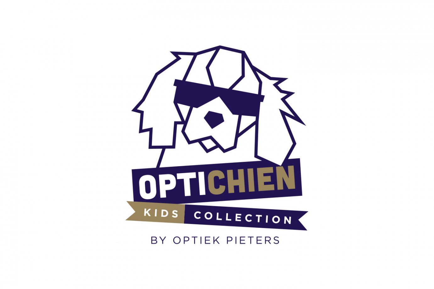 OptichienLogo.jpg
