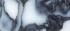 black dapple - 70_Tekengebied 1.png