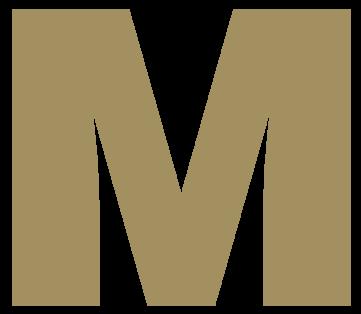 Meylandt logo 12
