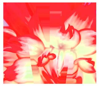 Meylandt logo 13