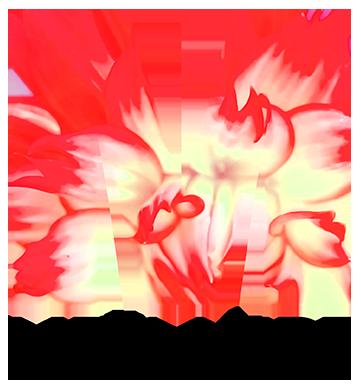 Meylandt logo 19
