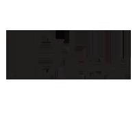 Logo Dior 2