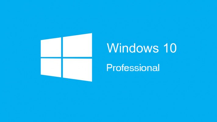 Windows 10 Professional.jpg