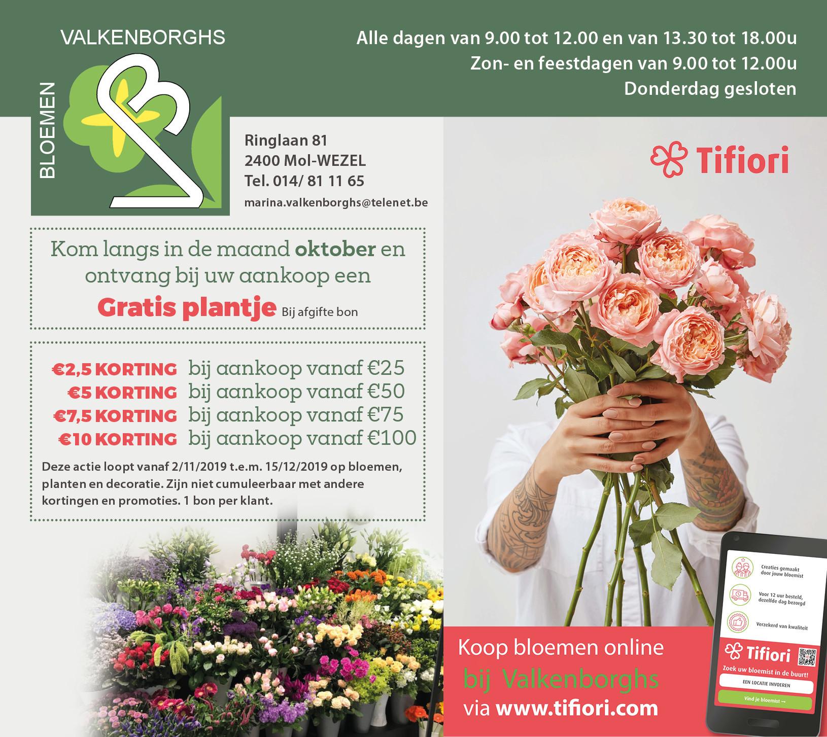 bloemen_valkenborghs_mol_sept_2019.jpg