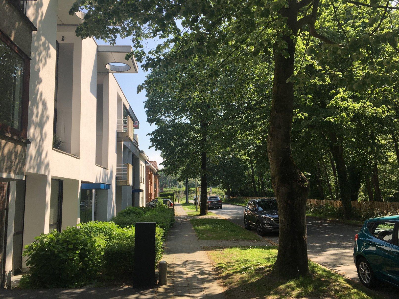 Rietveldprojects -Lieven-Parklaan8.jpg