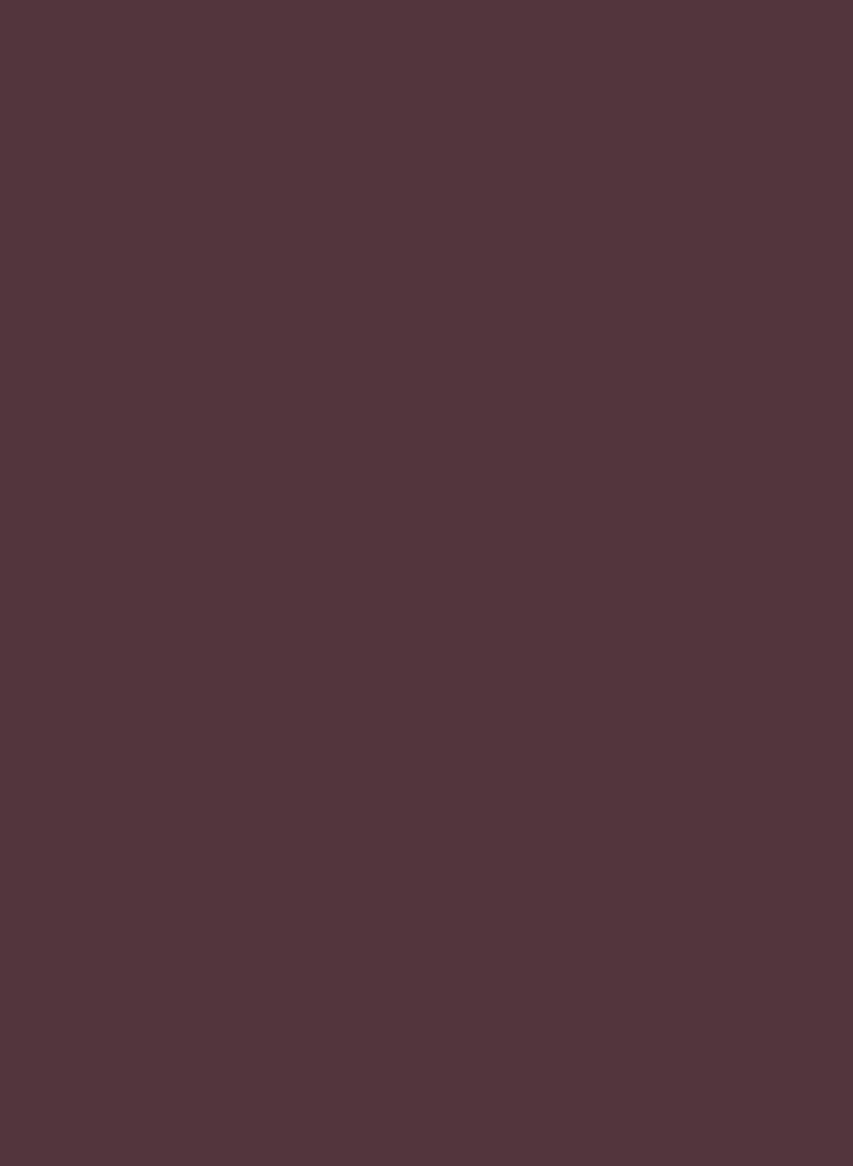 333-01 Cérise noir.jpg