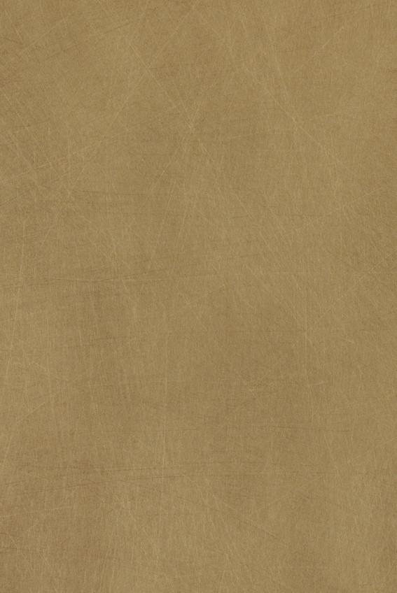 424 INDIAN GOLD (L).jpg