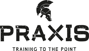 PRAXIS logo png.png
