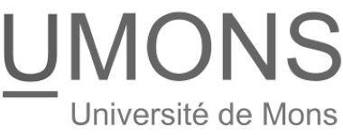 Universiteit Mons.jpg