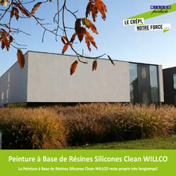 Peinture à Base de Résines Silicones Clean cover_silicoonharsverf_clean_fr.jpg