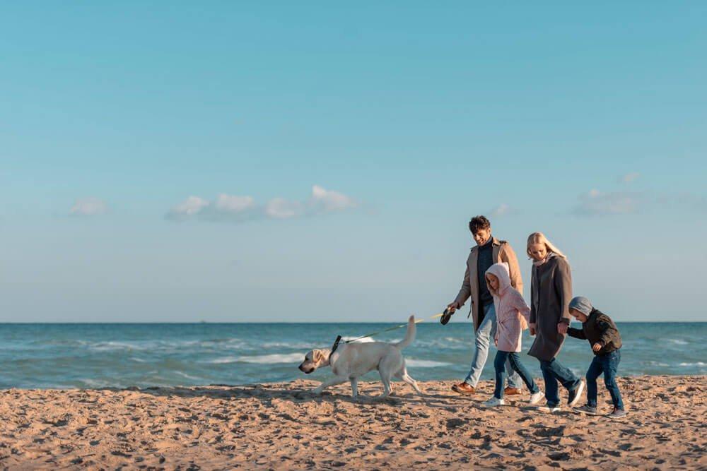 Zeeparken-met-de-hond-naar-zee2.jpg