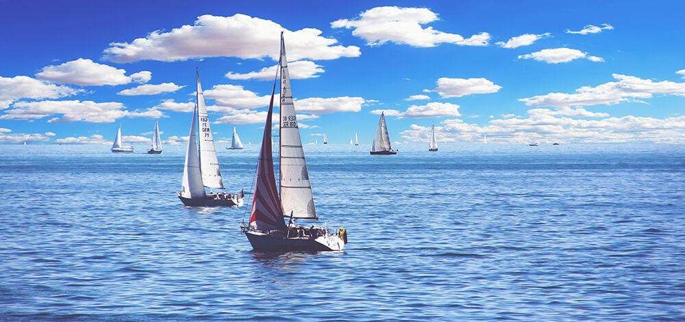 zeeparken-blog-unieke-zomervakantie.jpg